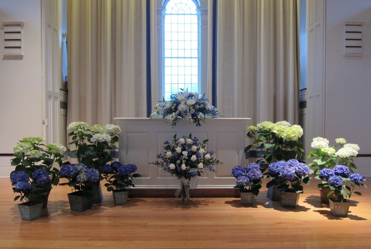 hydrangeas-at-hamilton-chapel