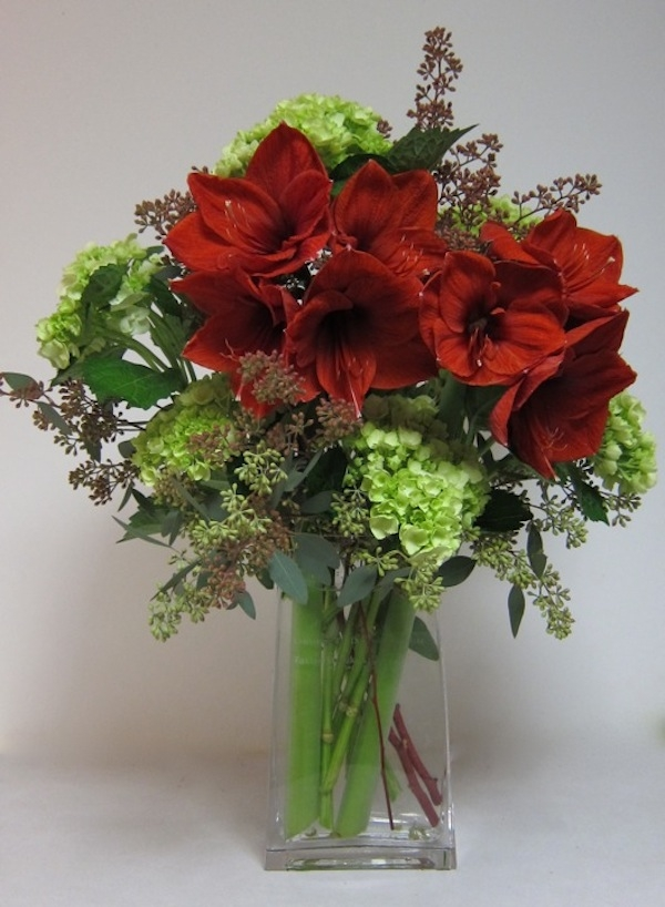 large-amaryllis-and-hydrangea