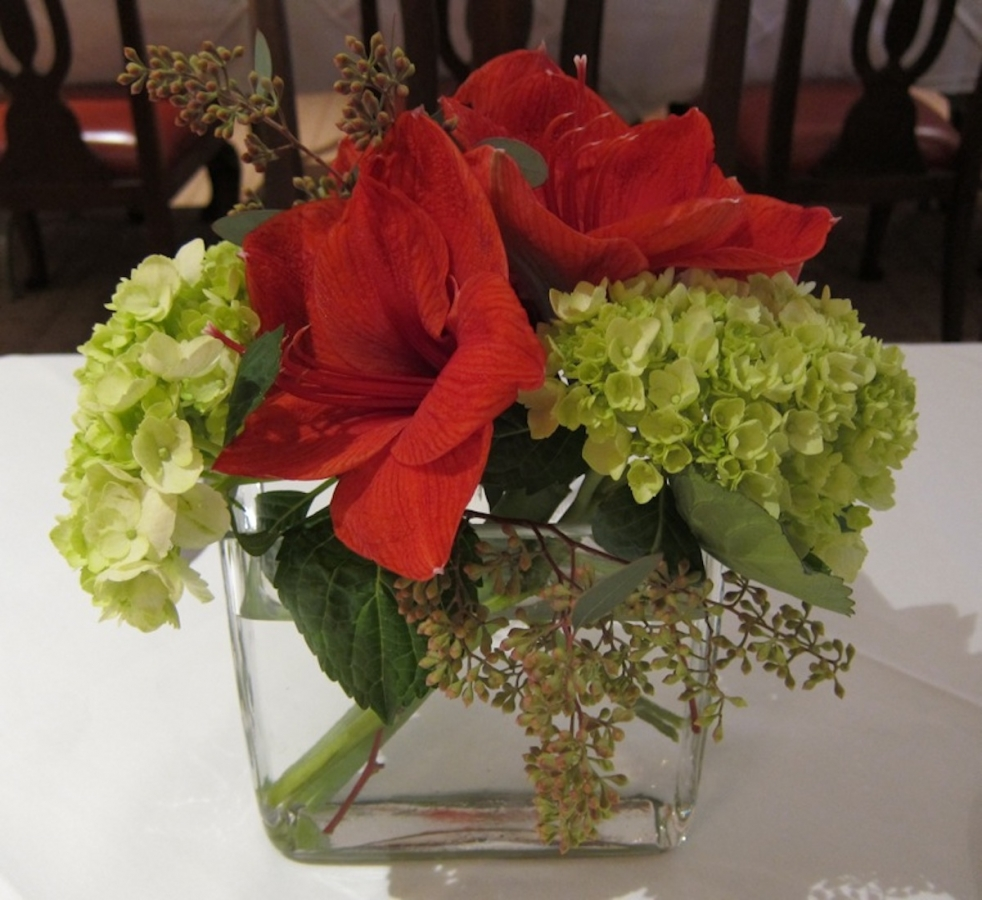 small-amaryllis-and-hydrangea